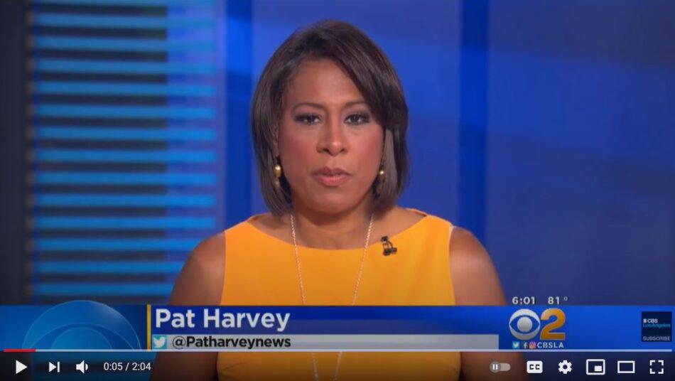 CBS News Pat Harvey